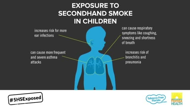 This infographic is a visual fact sheet about the dangerous effects of secondhand smoke exposure on a child's body.