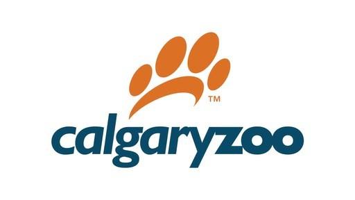 Calgary Zoo Panda: Er Shun