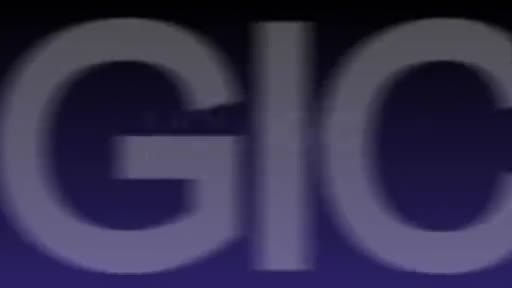 FLuent-HCP-Video