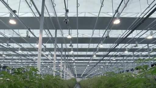 Aurora Sky Facility Footage