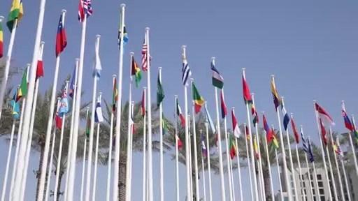 2021年世界绿色经济峰会以第七次迪拜宣言落下帷幕