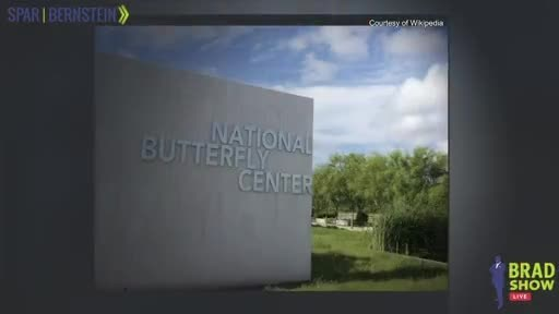 National Butterfly Center Warns Of The Environmental Disasters Of The Border Wall On Brad Show Live