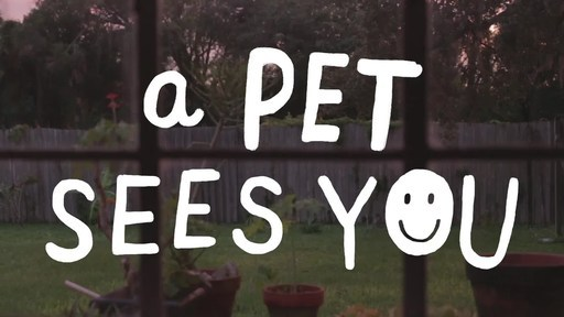 New Pets Add Life Video Highlights How A Pet Sees You Through The Most Challenging Of Times