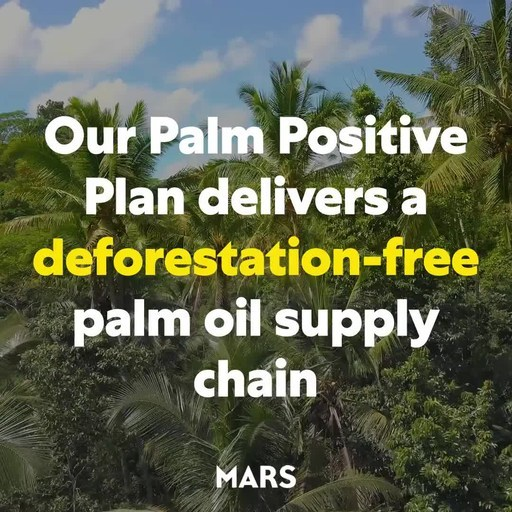 Mars Palm Positive Plan Delivers Deforestation-Free Palm Oil Supply Chain