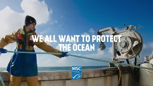 Sustainable Fisheries Improve Impacts on Ocean Ecosystems and...