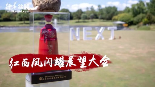 Xinhua Silk Road: Red Xifeng debuts at NEXT Summit (Sky 2020), spreading Chinese liquor culture through cooperation