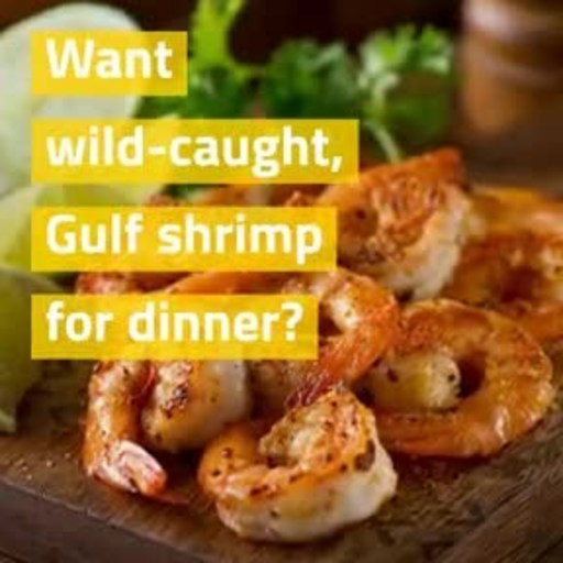 Paul Piazza & Son Seafood of New Orleans has launched an online store from which consumers can order wild-caught shrimp to be shipped anywhere in the U.S.