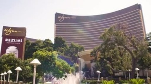 Video footage for download with comments from Marilyn Spiegel, President of Wynn Las Vegas