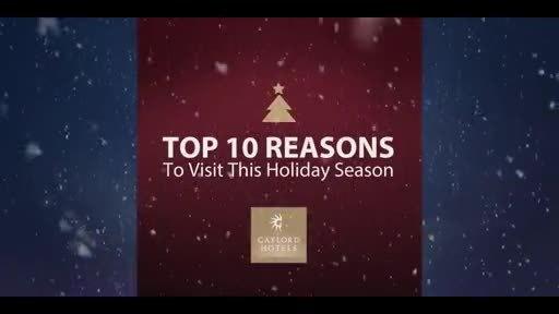 Top 10 Reasons to Visit This Holiday Season