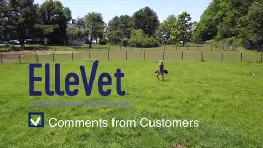 Cannabinoids for Canines:  Cornell Paper Published Showing ElleVet Hemp Products Increase Comfort in Dogs with Arthritis