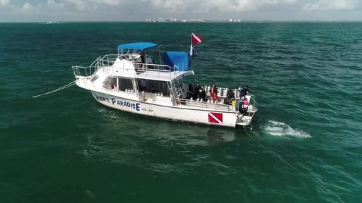 Enovation Brands, Inc. kicked off the Living Coral cause marketing effort with $10,000 donation to Force Blue, Inc. to further shared mission to save the world's coral reefs.