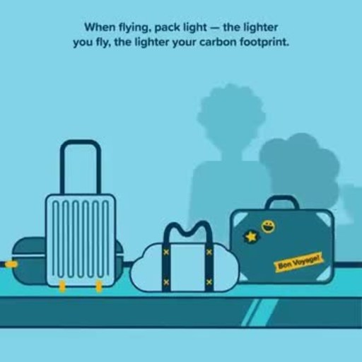 Cool Effect has seen an increase in demand for travel offsets, especially for flying, as consumers have started to recognize the environmental impact of their trips and have sought to take action.