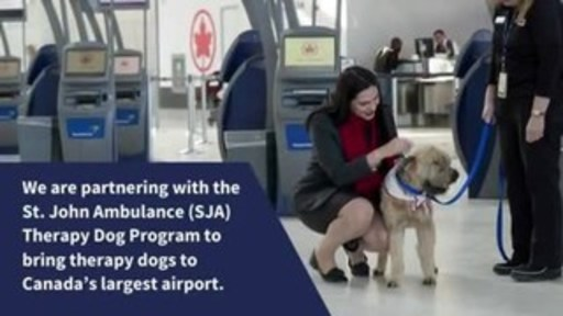 Video: Toronto Pearson and St. John Ambulance Therapy Dog Program bring Therapy Dogs to YYZ to Enhance the Passenger Experience