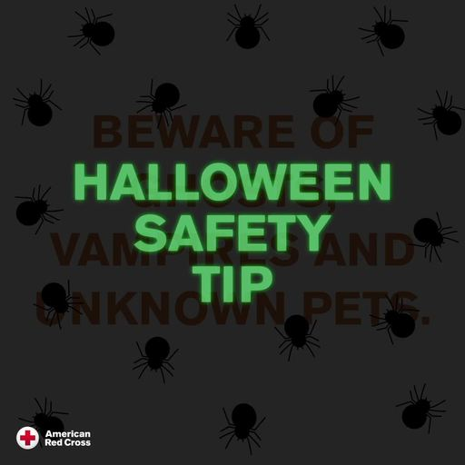 Halloween Safety Tip: Beware of ghosts, vampires and unknown pets.