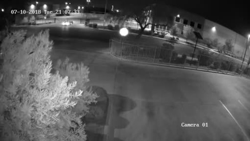Beauty Bandits Steal Christmas Trees and FOREO Face Cleansers from Vegas Warehouse