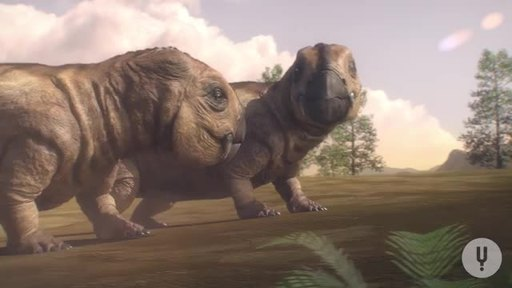 See the extraordinary creatures who dominated Earth, and the powerful events that led to their extinction, in Ancient Earth, available now on CuriosityStream.