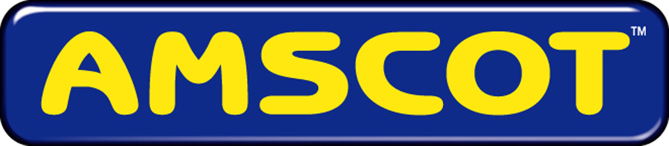 Amscot Financial logo.