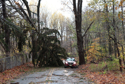 A pine tree broken by the winds of Hurricane Sandy, lies atop JCP&L utility wires, blocking Punchbowl Road in Morristown, NJ, Tuesday morning.  (PRNewsFoto/FirstEnergy Corp.)