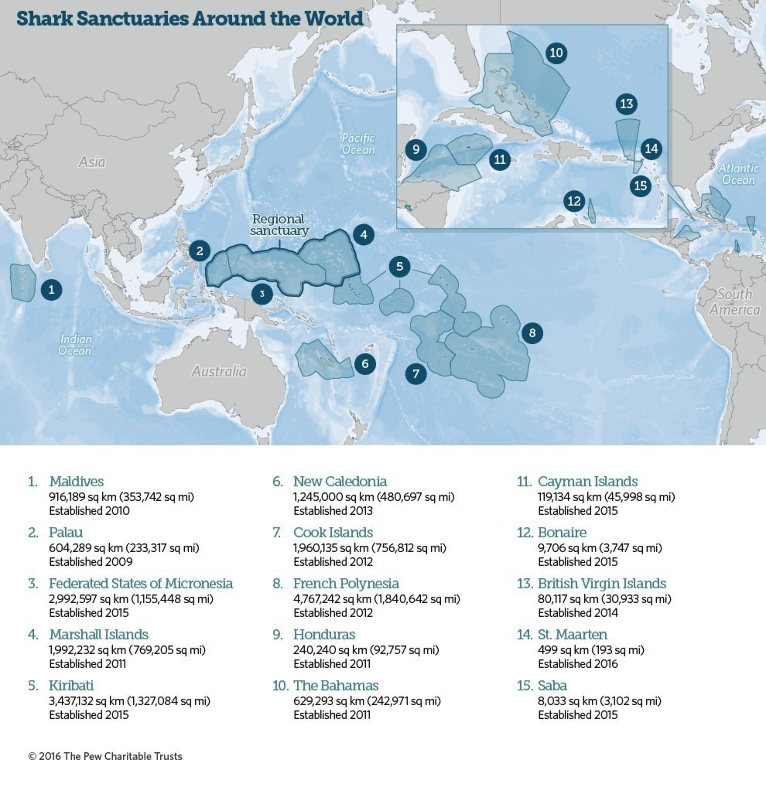 Shark Sanctuaries Around the World