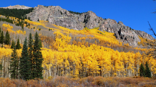Denver has one of the longest periods of fall colors of any city in the country. Different elevations make it ...