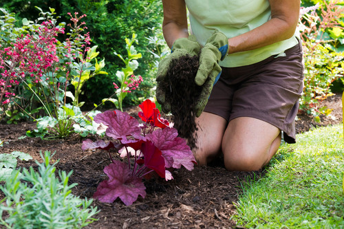 Why pull weeds all season? It's possible to stop weeds as seeds, before they grow. Apply a layer of mulch ...