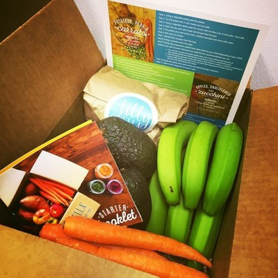 Dallas mom launches delivery service to simplify homemade baby food lilly bellas stage 1 box includes organic produce recipe card and starter booklet forumfinder Gallery