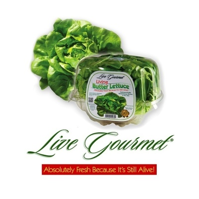 Hollandia Produce, LP, grower and shipper of Live Gourmet and Grower Pete's brands of living lettuce and leafy greens, today announced it has earned a perfect score on its PrimusGFS certification audit, recently conducted by Primus Laboratories. (PRNewsFoto/Hollandia Produce, LP)
