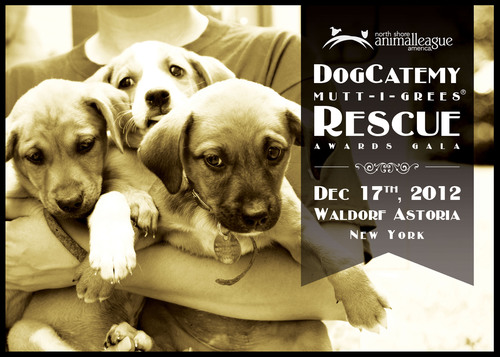 ANIMAL LEAGUE AMERICA'S PRESTIGIOUS DOGCATEMY MUTT-I-GREES(R) RESCUE AWARDS, HOSTED BY ABC NEWS GOOD ...