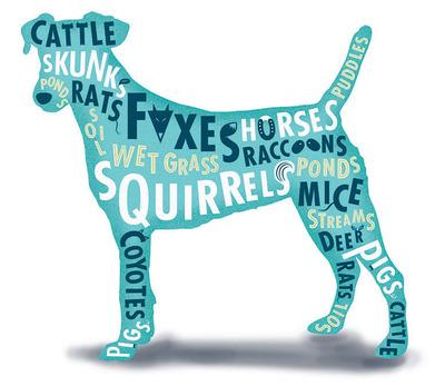 New Online Map Provides Resource for Pet Owners in At-Risk Leptospirosis Environments. (PRNewsFoto/Boehringer Ingelheim Vetmedica, Inc.) (PRNewsFoto/BOEHRINGER INGELHEIM VETMEDICA)
