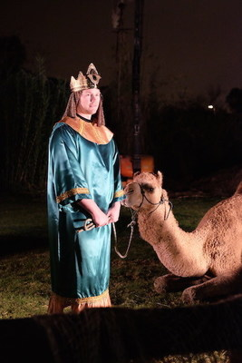 Wise-man and Camel.