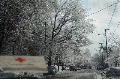 An ice storm left a thick coating of ice on trees, shrubs, cars and power lines in Louisville, KY, plunging residents into the cold and darkness when the power went out. Credit: Daniel Cima/American Red Cross.