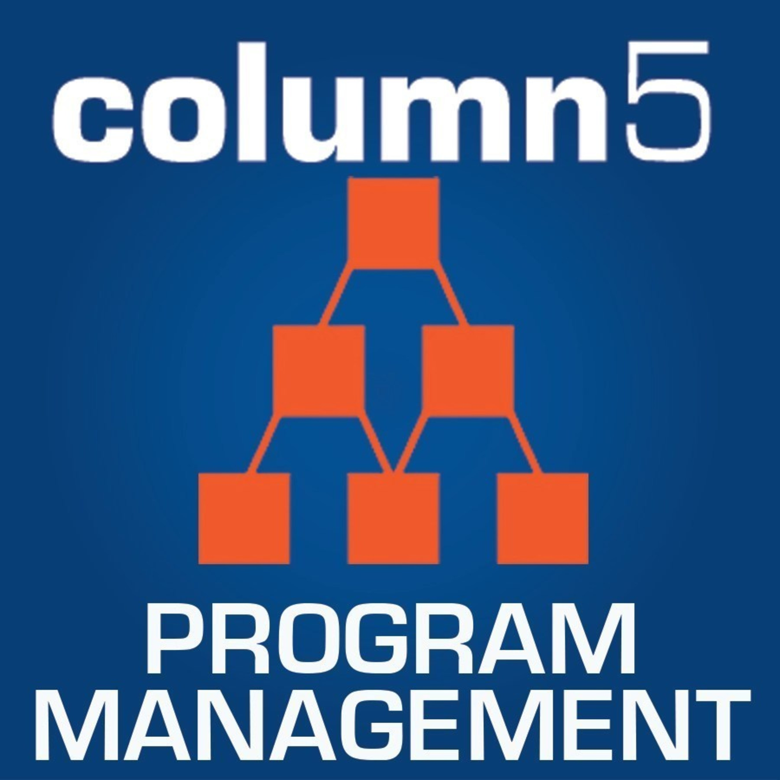 Column5 Consulting, LLC Achieves SAP Accreditation for Partner Quality Program