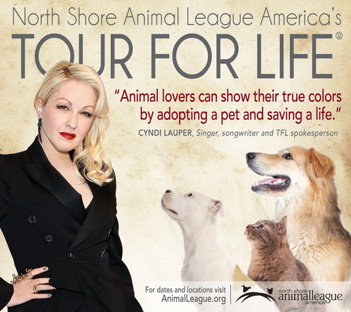 Cyndi Lauper Joins North Shore Animal League America As National Spokesperson for Its 2012 Tour for