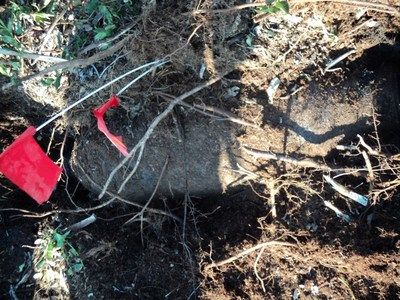 An unexploded World War II era-bomb found (marked with a red flag) and rendered harmless by Sterling Global Operations several years ago in Myrtle Beach South Carolina. SGO, an international stability operations company that provides munitions management and mitigation among its services, dealt with eight, 250-pound bombs some 500 meters from a Myrtle Beach child development center, private residences, and a church. Many forgotten World War I and II-era former firing and training ranges, once in...