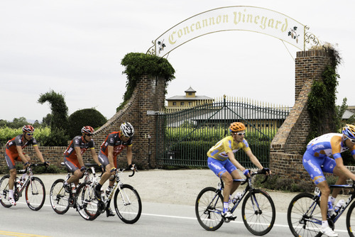 Pro cyclists, including Lance Armstrong, passing by Concannon Vineyard during the AMGEN Tour of California ...