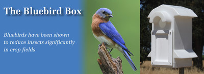 New Bluebird House gets high occupation and repels sparrows