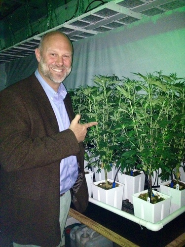 Attorney Gavin Kogan admires the results from an Impressive All LED Light Grow system at a client's grow ...