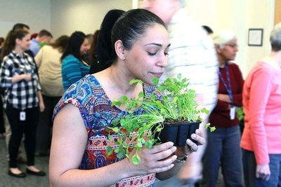 Diana Almonte decides to stop and smell the cilantro at Cartus Danbury's Earth Day fair.