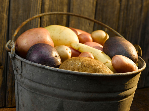 Potato Supply Unaffected By Drought