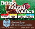 To illustrate the difference and help consumers get to know their eggs, Blue Sky Family Farms introduces the Ratings Animal Welfare (R.A.W.) Scorecard. The R.A.W. Scorecard rates animal welfare in the egg industry across four levels from one star Caged to Pasture Raised with four stars.  Cage Free is rated two stars and Free Range is three.