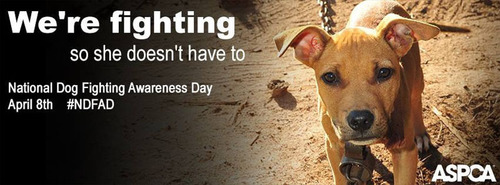 The ASPCA encourages the public to change their Facebook cover photo to the attached image to support National ...