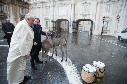 Swiss Company Eurolactis Offers Pope Francis two Donkeys (PRNewsFoto/Eurolactis)