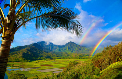 The spectacular natural beauty of Kauai, the Garden Island, is captured in Hanalei Valley on the island's north shore.  (PRNewsFoto/Kauai Visitors Bureau)