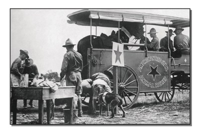 American Humane Association's legendary animal rescue program was born on the battlefields of World War I Europe 100 years ago in 1916 when the U.S. Secretary of War asked the organization to save war horses. During that terrible time, they rescued and cared for 68,000 wounded horses a month and since the Great War they have been part of virtually every major disaster response from Pearl Harbor to 9/11; Hurricanes Andrew and Katrina; the Mount St. Helens eruption; the Joplin, Missouri tornado; the Japanese and Haitian earthquakes; and Superstorm Sandy.