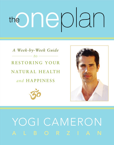 Yogi Cameron Launches The One Plan.  (PRNewsFoto/Yogi Cameron)