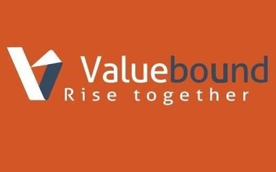 Leading Enterprise Drupal development company (PRNewsFoto/Valuebound)