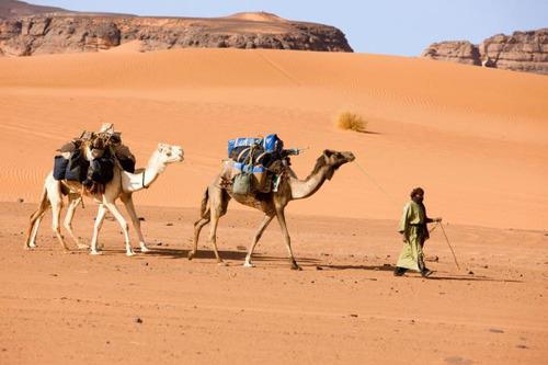 Libya Man and Camels.  (PRNewsFoto/American Titanic)