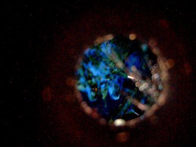 Nasal photo at twelve hours; Note blue color. (PRNewsFoto/Fuisz Pharma)