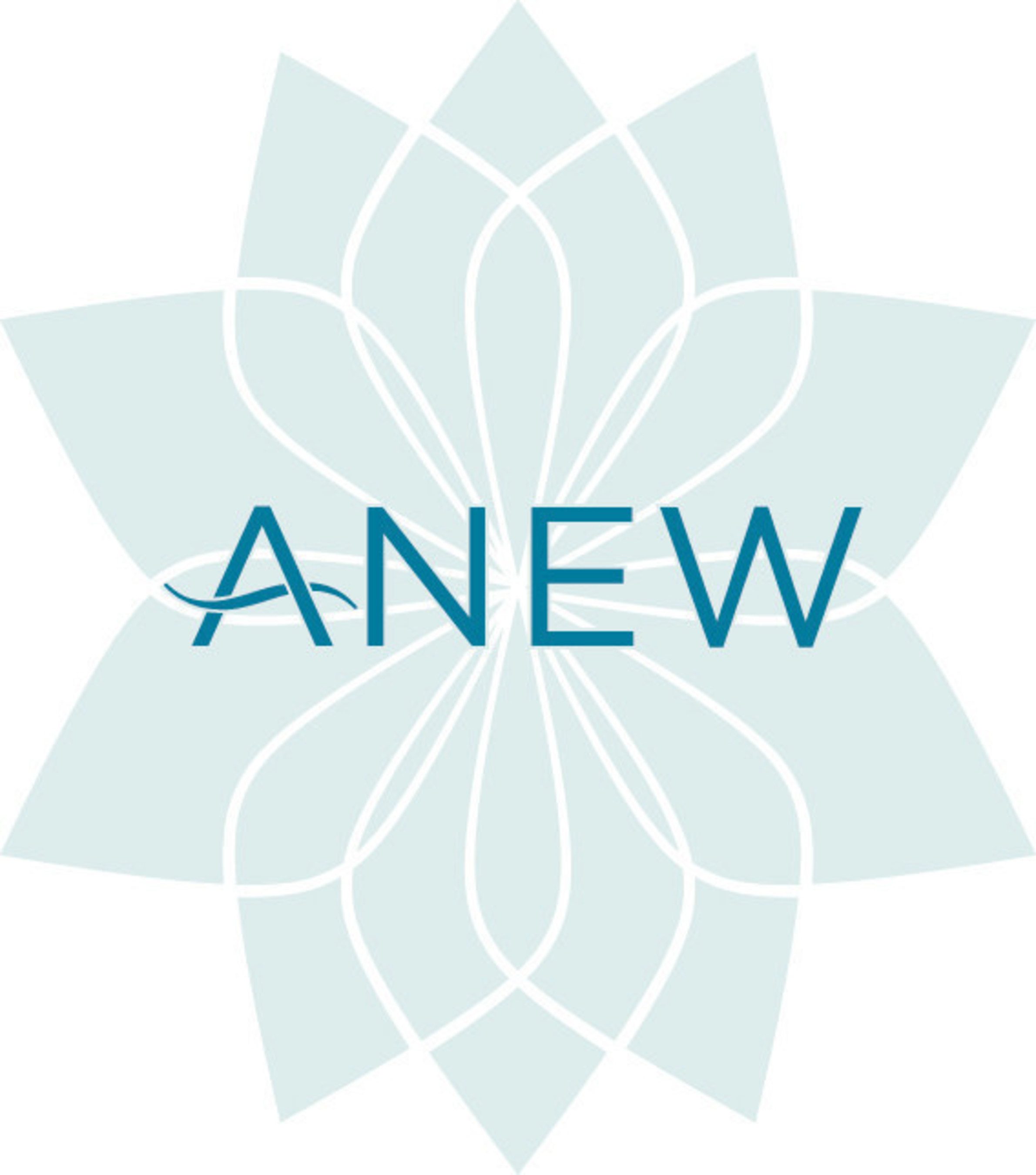 ANEW Wines Logo.