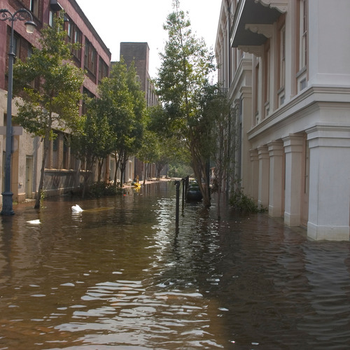 In the wake of Hurricane Sandy, college administrators, campus safety directors, and CTOs are invited to attend  ...